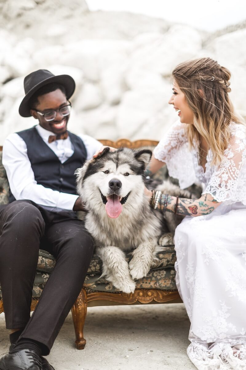Hochzeit mit Tier Ideen