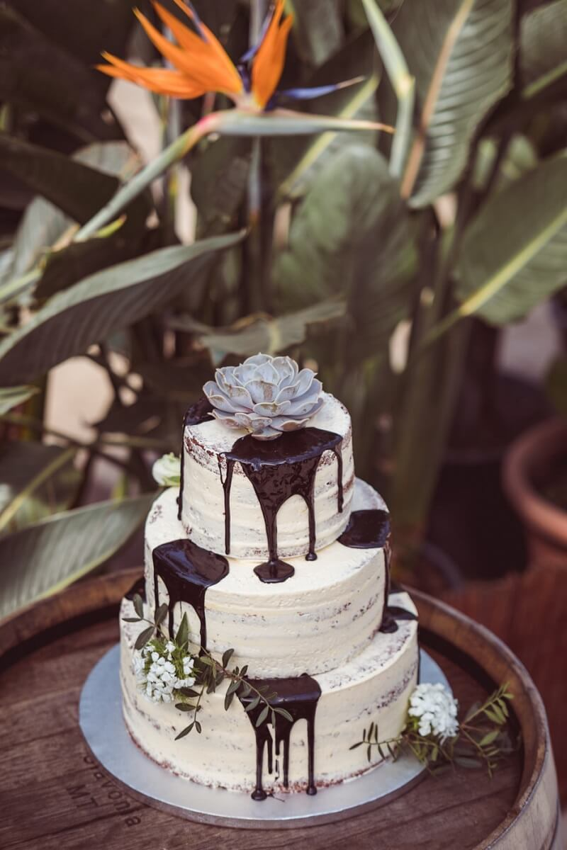 Semi Naked Cake mit Sukkulente