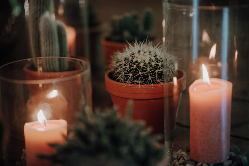 Kaktus Hochzeitsdeko