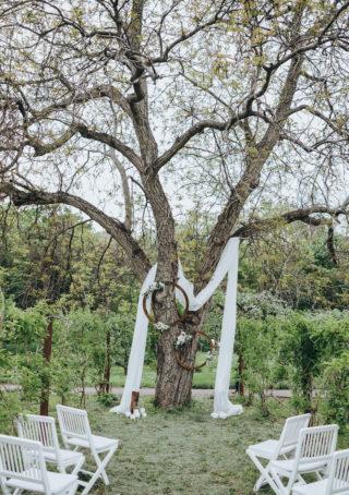 Hochzeitsbogen an einem Baum