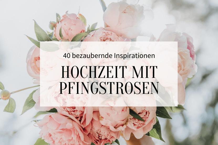 Pfingstrosen_Titelbild
